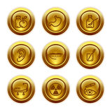 15 икон золота кнопки установили сеть Стоковые Изображения