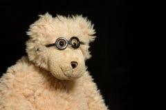 15熊 免版税库存图片