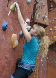 15 serie för klättrakholerock Royaltyfria Foton