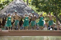1514 danzatori maori Immagine Stock Libera da Diritti