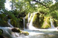 16个湖plitvice 免版税图库摄影