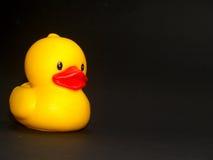 16只鸭子玩具 图库摄影