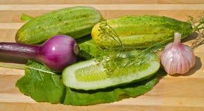 16新鲜蔬菜 免版税图库摄影