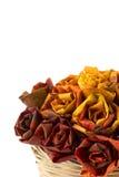 16 цветов осени Стоковые Фото