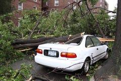16 2010年城市击中新的9月龙卷风约克 库存图片