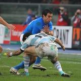 16 22 2010 испытаний рэгби спички Аргентины Италии против Стоковое Изображение RF