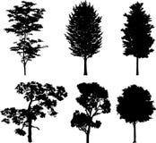 16 arbres d'isolement de silhouettes Image stock