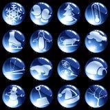 16 botones temáticos del invierno high-gloss Fotografía de archivo