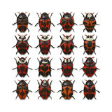 16 different bugs. An illustration of 16 different red bugs stock illustration