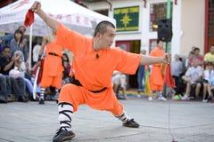 16 fu kung shaolin 免版税库存照片