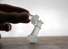 16 kawałków szachowych obrazy royalty free