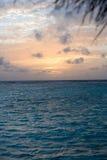 16 maldives arkivfoton