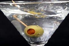 16 martini Arkivfoton