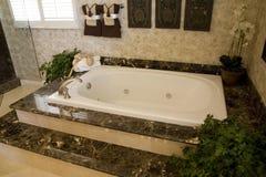 1649年浴缸 库存照片