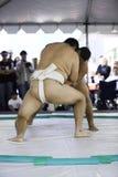 16位sumo摔跤手 免版税库存照片