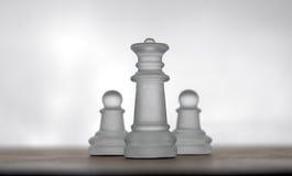 17个棋子 免版税库存图片
