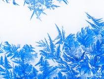 17朵花冰 免版税库存图片