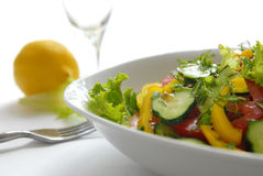17棵沙拉蔬菜 免版税图库摄影