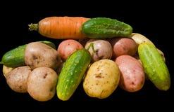 17棵蔬菜 免版税库存图片