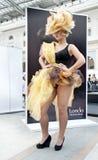 17竞争hairdresses组成 免版税库存图片