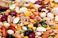 17粒大麦豆混合 免版税图库摄影