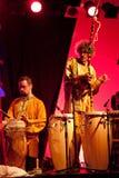 17 2009年节日汉诺威masala可以terrakota 库存图片