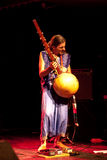 17 2009 masala de Hannovre de festival peuvent terrakota Photo libre de droits