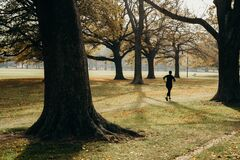 Free 17/5/2020 People Workout Outdoors, The Golden Autumn  At Hagley Park, Christchurch, New Zealand. During COVID-19 Level 2 Situation Royalty Free Stock Photos - 183597068