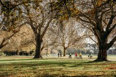 Free 17/5/2020 People Workout Outdoors, The Golden Autumn  At Hagley Park, Christchurch, New Zealand. During COVID-19 Level 2 Situation Stock Photography - 183597282