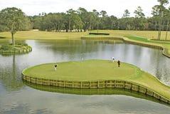 17th зеленое tpc sawgrass Стоковая Фотография