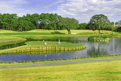 17th Island Green at Sawgrass Royalty Free Stock Image