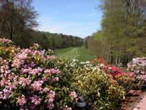 18ème Trou au terrain de golf de Wooldlawn Image stock