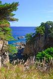 18个海岸线结构树 库存照片