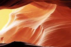 18 картин природы стоковая фотография