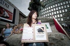 18 2011 rymde juni milan stolthetveggie Arkivbilder