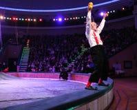 18 2012 fabruary minsk för belarus cirkus kapacitet Royaltyfria Foton
