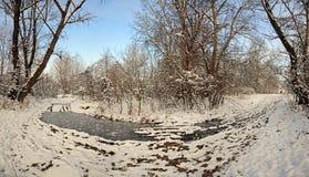180弯曲了多雪双的森林公路 免版税库存图片