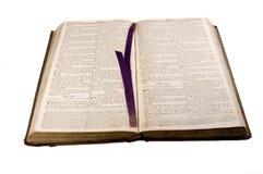 1812古色古香的圣经开放在艾赛尔 图库摄影