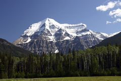 182 View of Mountain Robson Stock Photography
