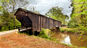 1824桥梁c7 库存照片