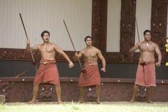 1845年毛利人仪式的问候 库存图片
