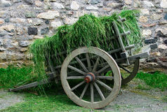 18th сено столетия тележки Стоковая Фотография RF