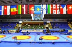19在搏斗的国际比赛在Kyiv举行了 库存照片