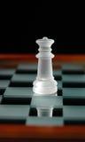 19 частей шахмат Стоковые Фото