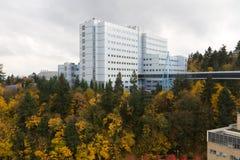 19 11月2011日俄勒冈波特兰 免版税库存图片