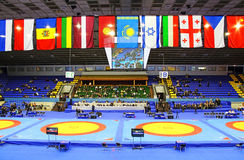 19 International Tournament in wrestling was held in Kyiv. KYIV, UKRAINE - FEBRUARY 16: 19 International Tournament in wrestling was held in Kyiv February 16 Stock Photos
