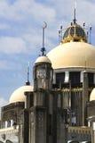 19. Jahrhundert-Moschee Lizenzfreie Stockfotografie