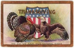 1909年葡萄酒感恩明信片两全国鸟 免版税库存图片