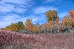 192个秋天湖 库存照片
