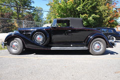 1934 Packard 12 Convertible Antique Car Royalty Free Stock Image